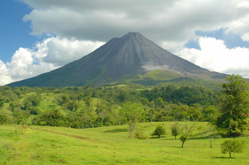 Mączka bazaltowa gleby wulkaniczne żyzność