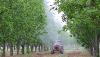 Nawożenie selenem – strona praktyczna